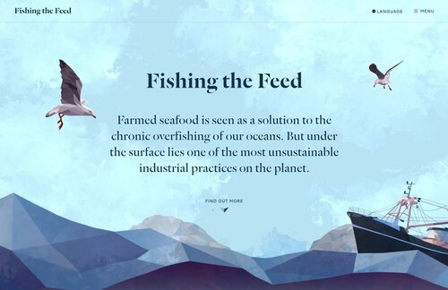 Fishing the Feed website